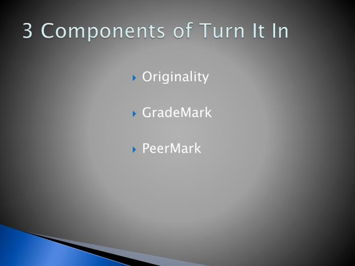 3 Components of Turn It In