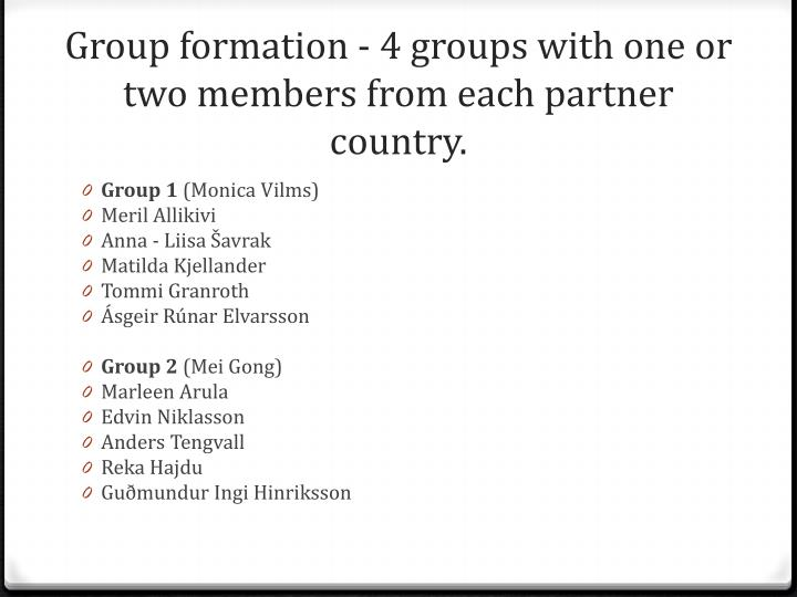 Group formation 4 groups with one or two members from each partner country