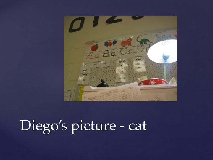 Diego s picture cat