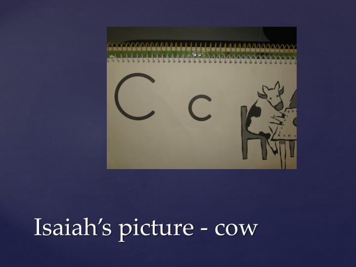 Isaiah s picture cow