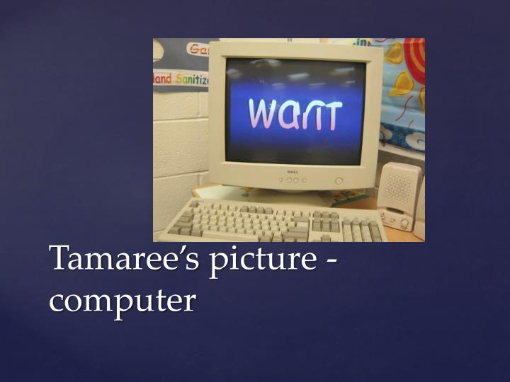 Tamaree's