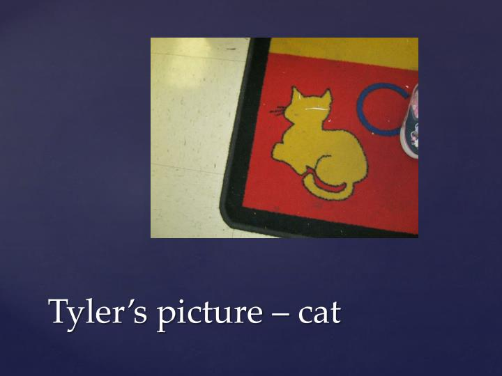 Tyler's picture – cat