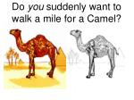do you suddenly want to walk a mile for a camel