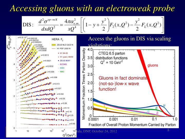 Gluons dominate