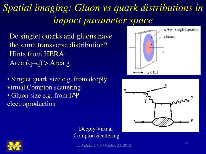 Spatial imaging: Gluon