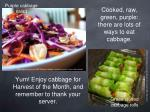 yum enjoy cabbage for harvest of the month and remember to thank your server