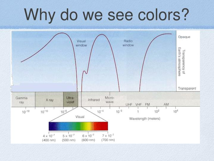 Why do we see colors?