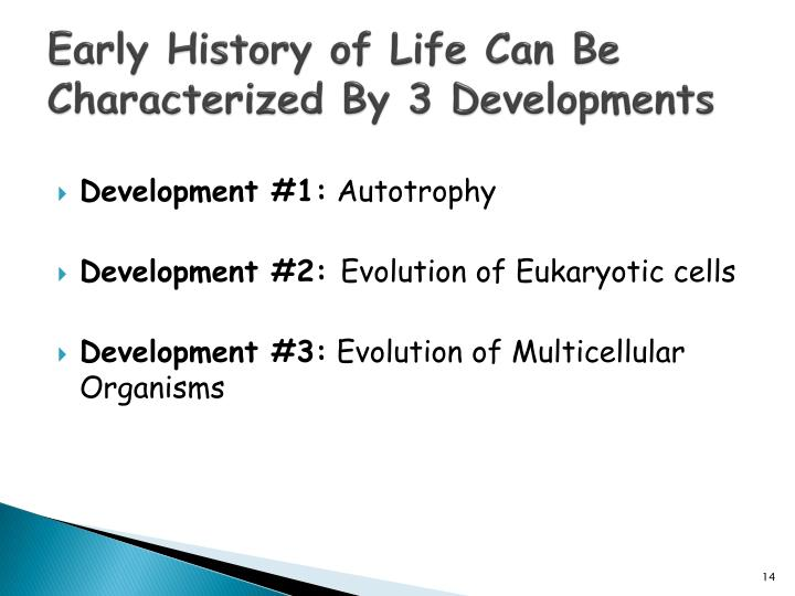 Early History of Life Can Be Characterized By 3 Developments