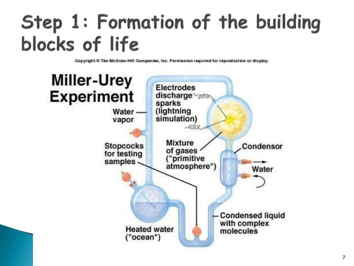 Step 1: Formation of the building blocks of life