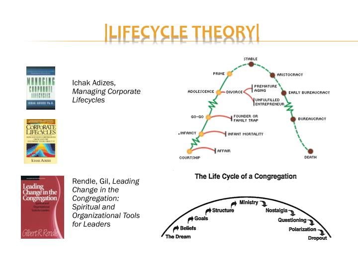  lifecycle theory 