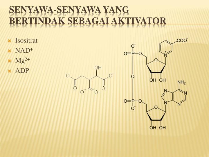 Isositrat