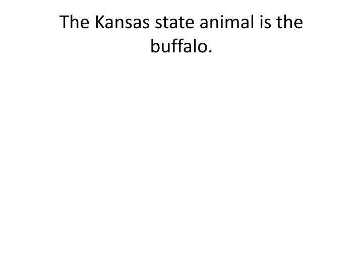 The Kansas state animal is