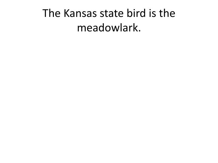 The kansas state bird is the meadowlark