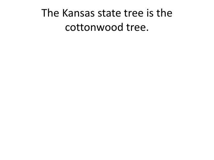 The Kansas state tree is