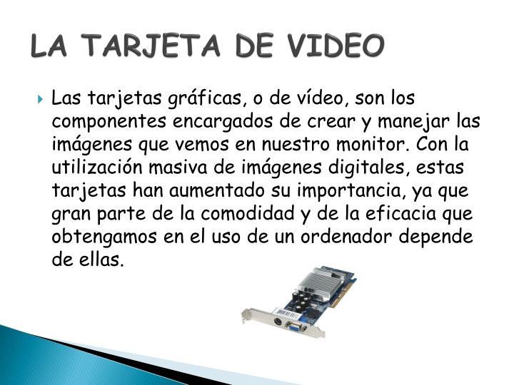 La tarjeta de video