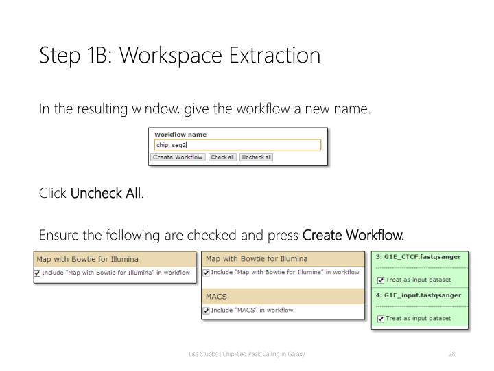 Step 1B: Workspace Extraction