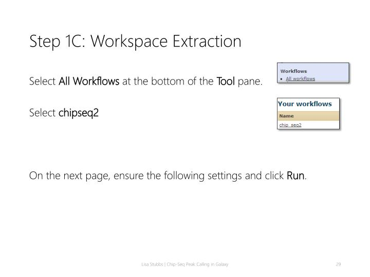 Step 1C: Workspace Extraction