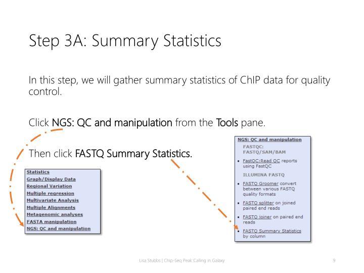Step 3A: Summary Statistics