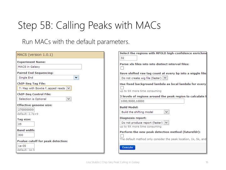 Step 5B: Calling Peaks with MACs