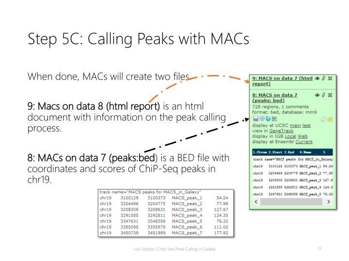 Step 5C: Calling Peaks with MACs
