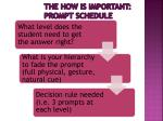 the how is important prompt schedule