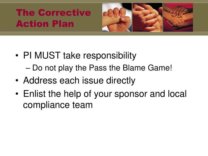 The Corrective Action Plan