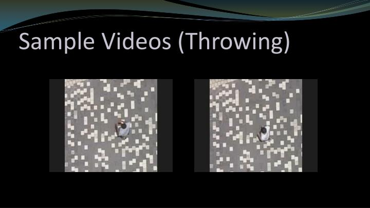 Sample Videos (Throwing)