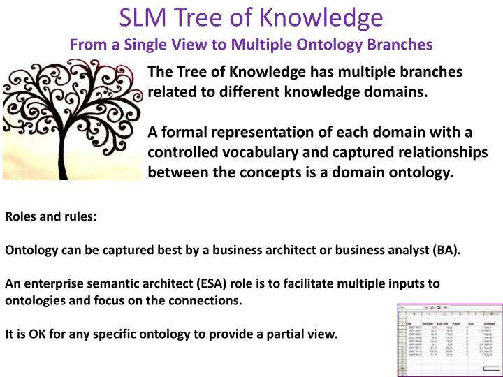 Slm tree of knowledge from a single view to multiple ontology branches