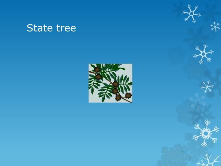 State tree