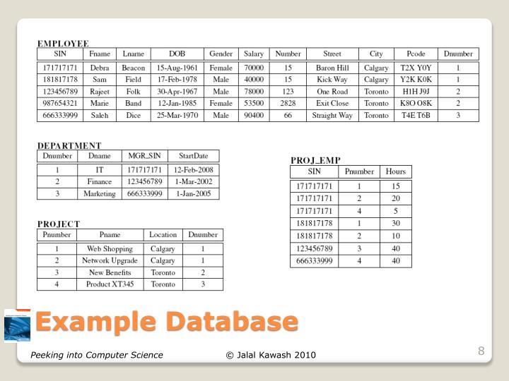 Example Database