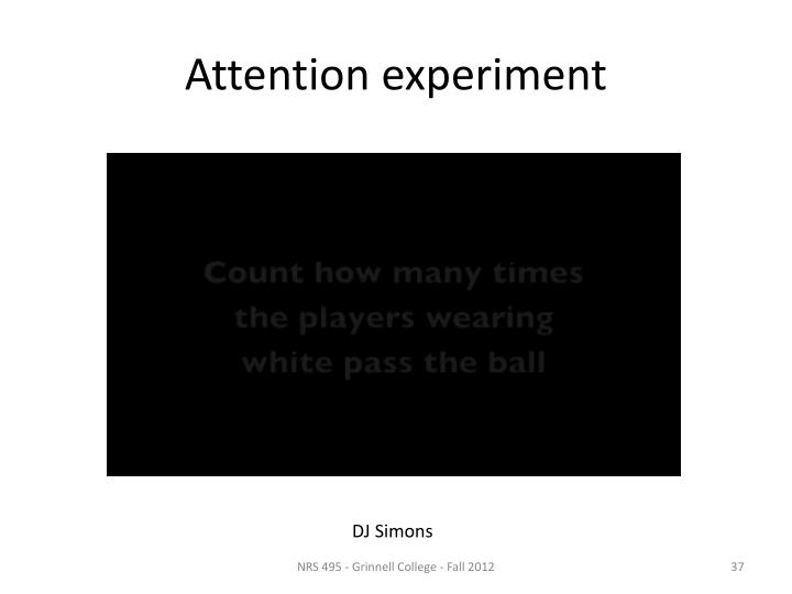 Attention experiment