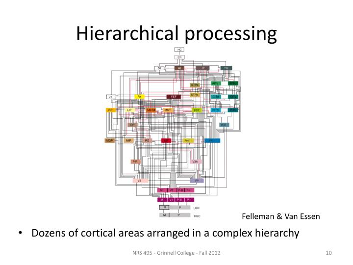 Hierarchical processing