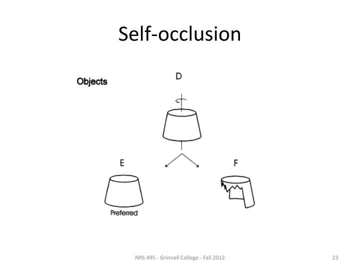 Self-occlusion