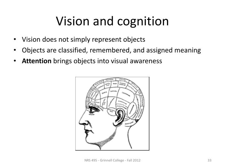 Vision and cognition