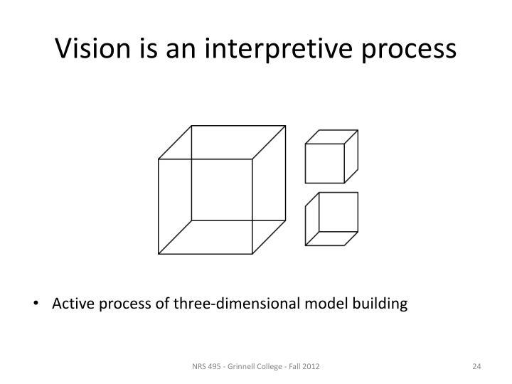 Vision is an interpretive process