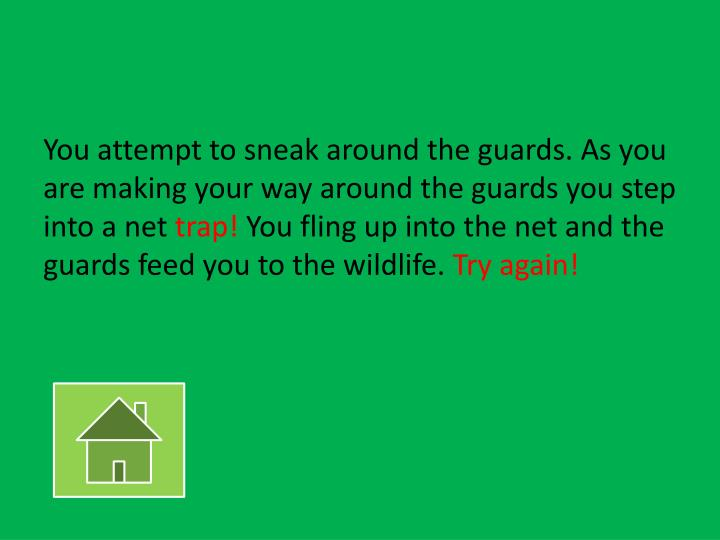 You attempt to sneak around the guards. As you are making your way around the guards you step into a net