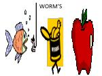 worm s