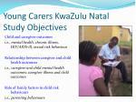 young carers kwazulu natal study objectives