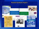 research synthesis projects