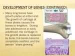 development of bones continued