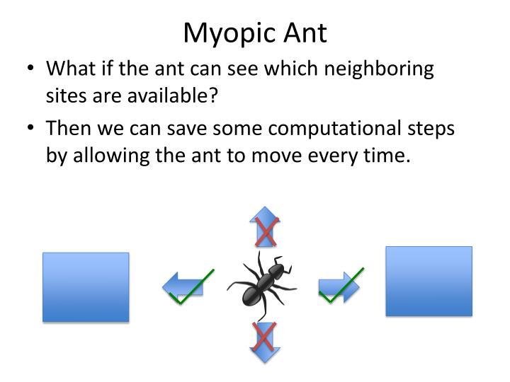 Myopic Ant