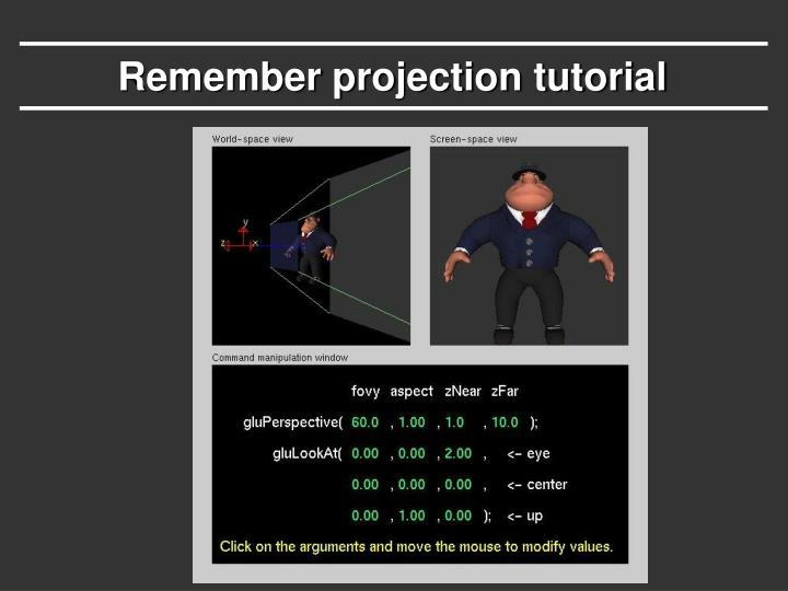 Remember projection tutorial