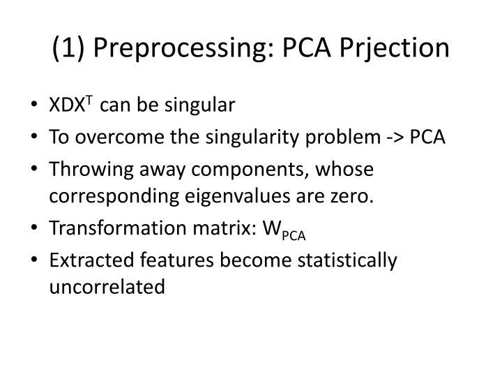 (1) Preprocessing: PCA