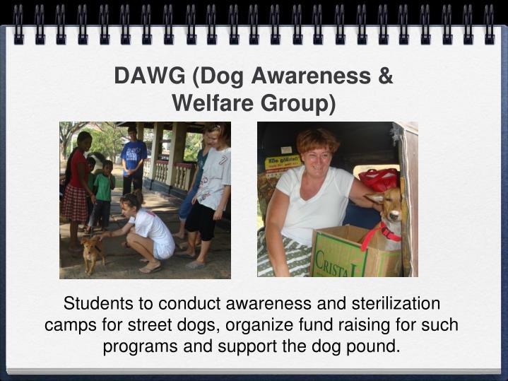 DAWG (Dog Awareness & Welfare Group)