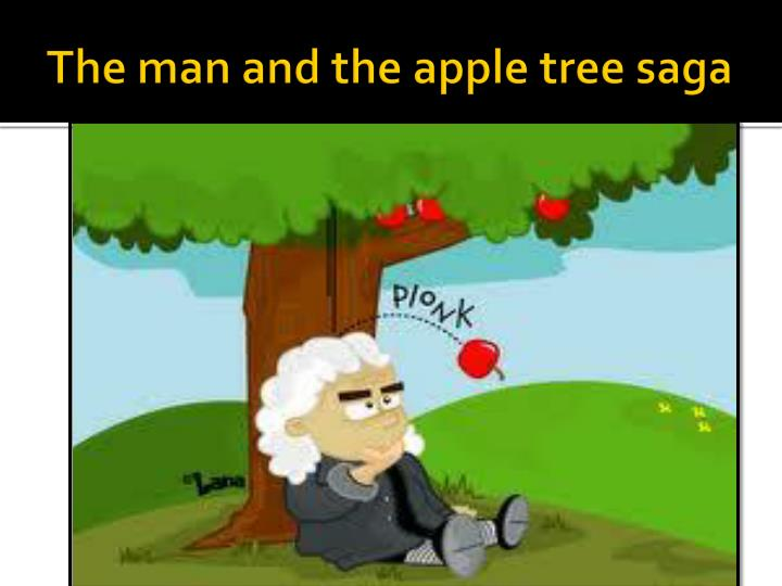 The man and the apple tree saga