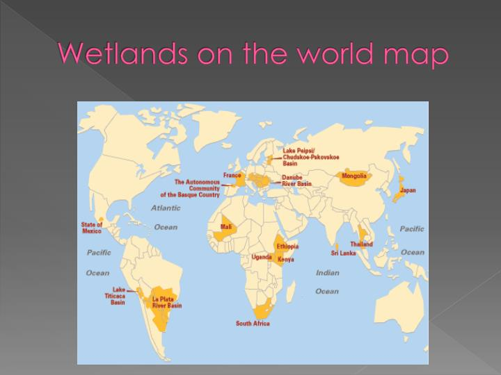 Wetlands on the world map