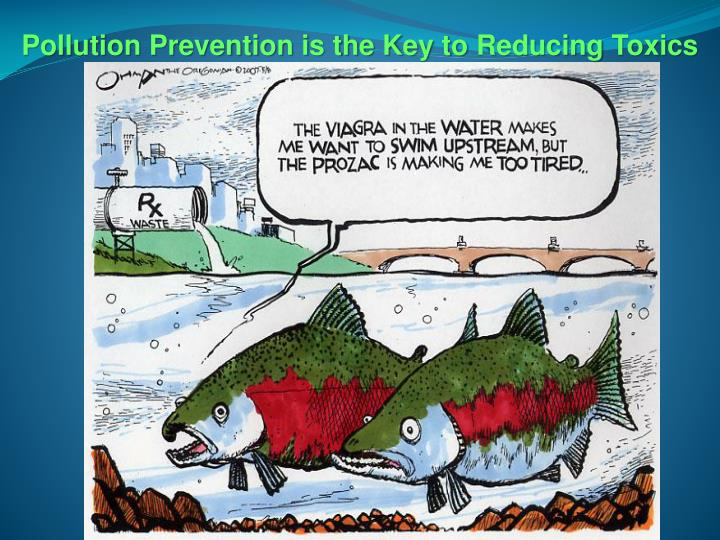 Pollution Prevention is the Key to