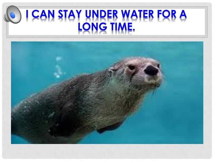 I can stay under water for a long time.