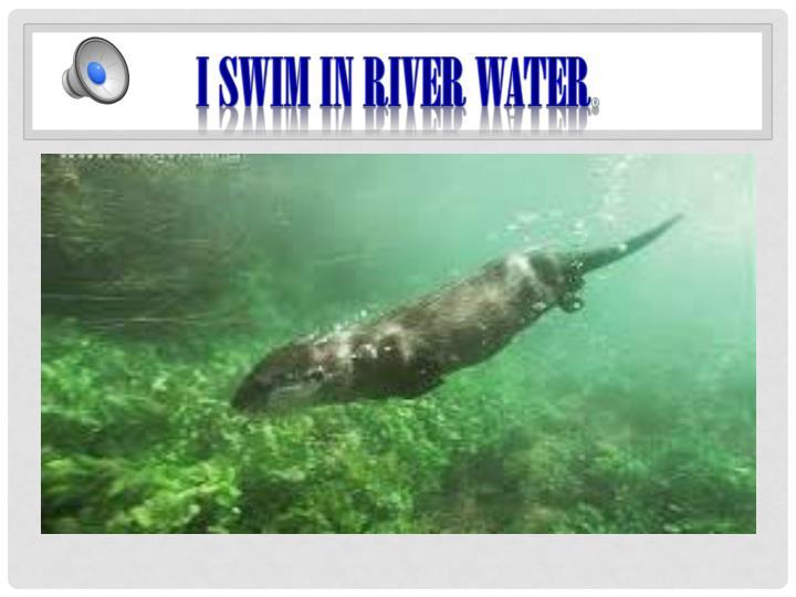 I swim in river water