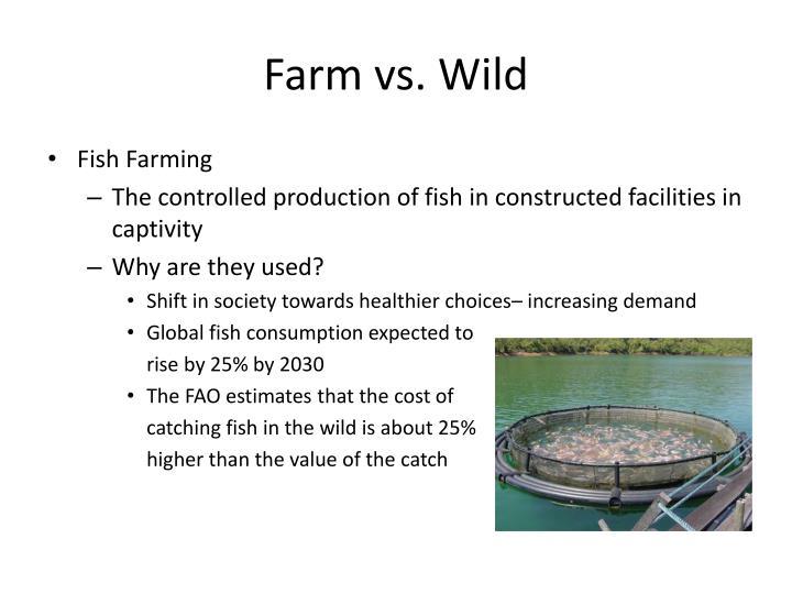Farm vs. Wild